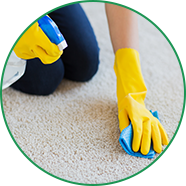 Cleaning with Green Cleaning Solutions | Harvey, IL